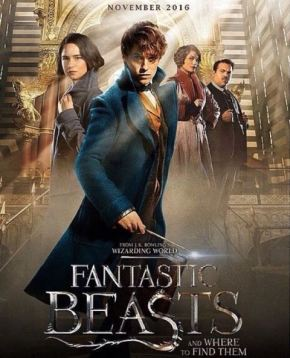 fantastic-beasts-sequel-03aug16